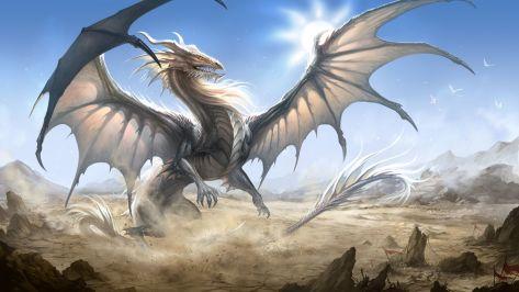 Dragon, Gray 01